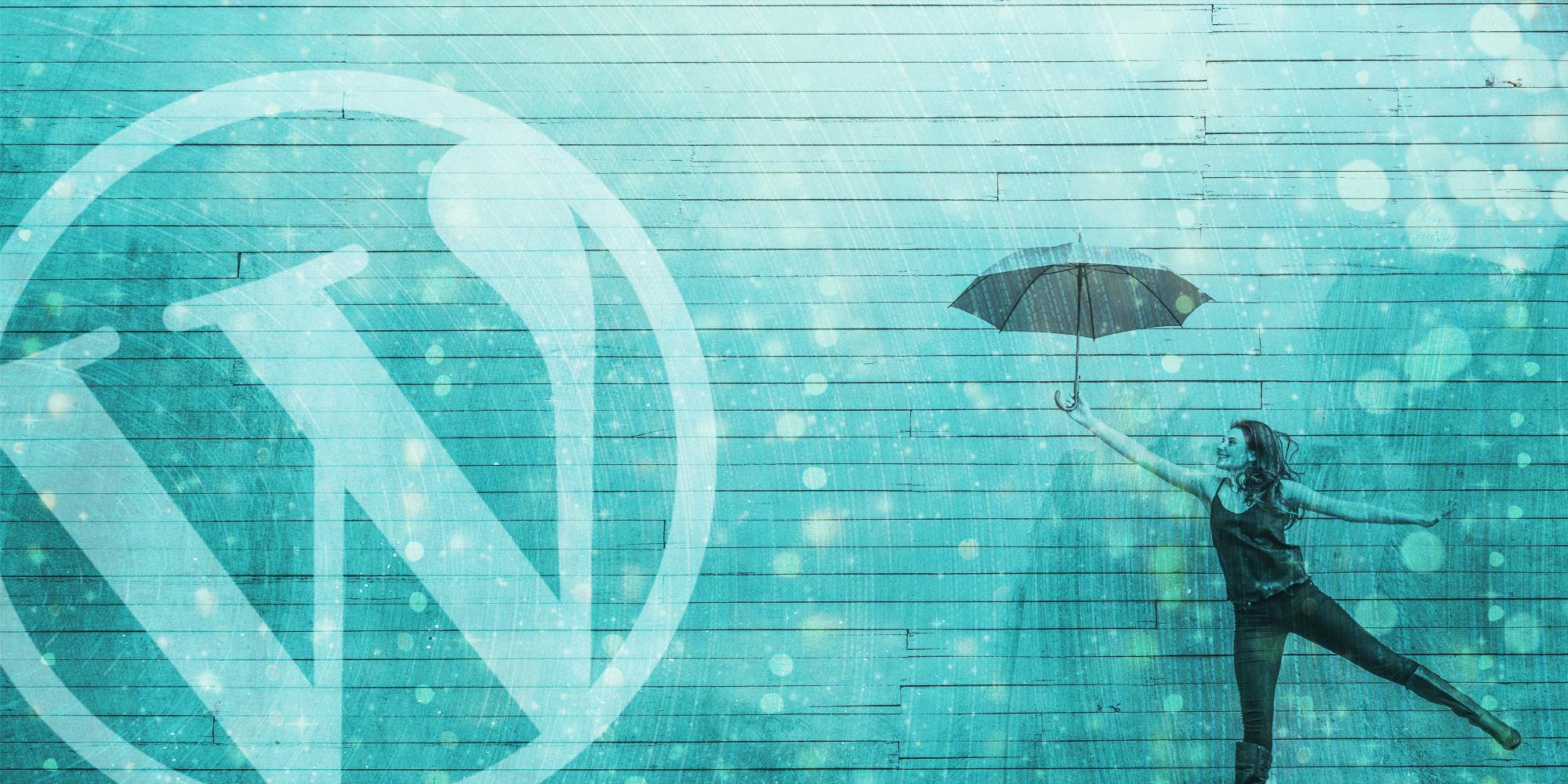 WordPress Theme Development Service by LaLa Projects